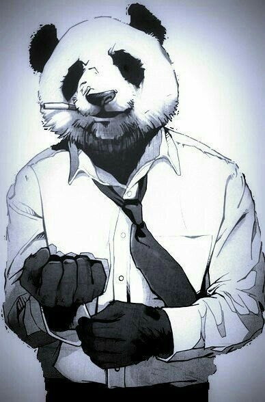 Panda is ready for work